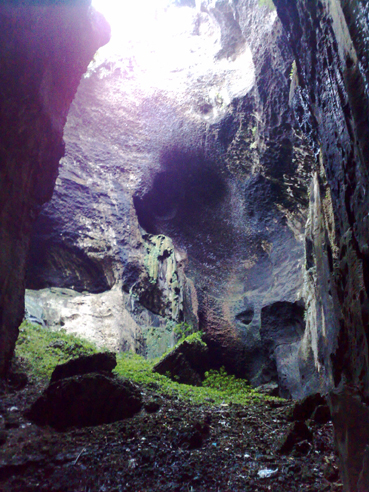 You are browsing images from the article: WA1503 - Sandakan - Gomantong Cave & Kinabatangan River Cruise