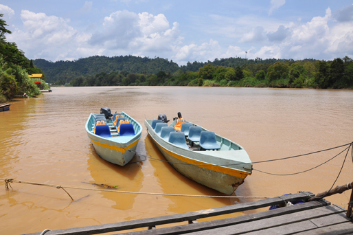 You are browsing images from the article: Lower Kinabatangan River